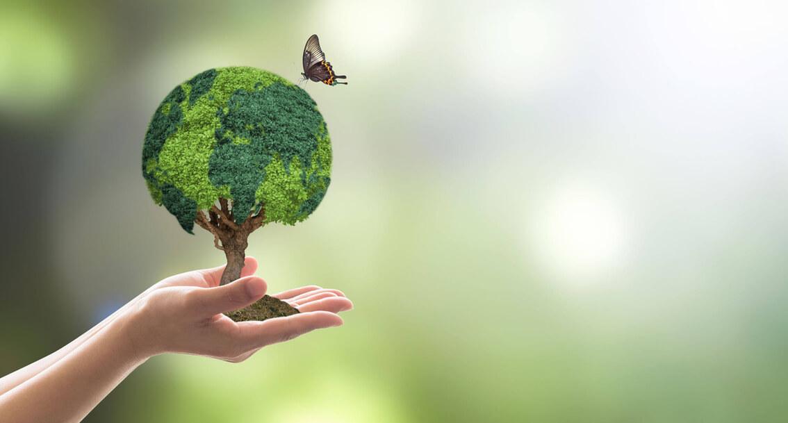 Biodegradabilité